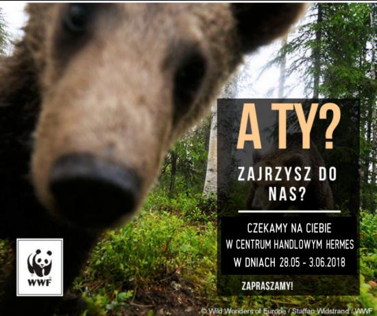 Spotkanie z fundacją WWF
